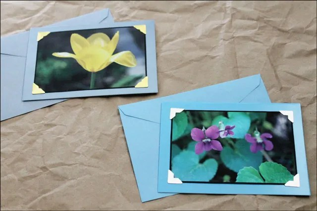 diy-greeting-cards-from-photographs