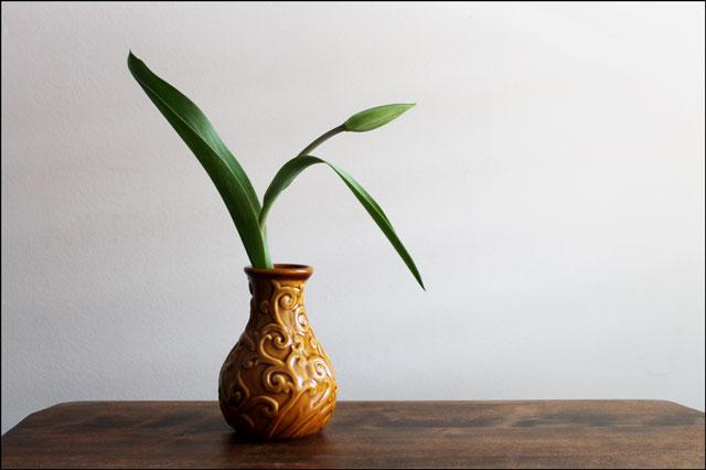 tulip-in-vase-01