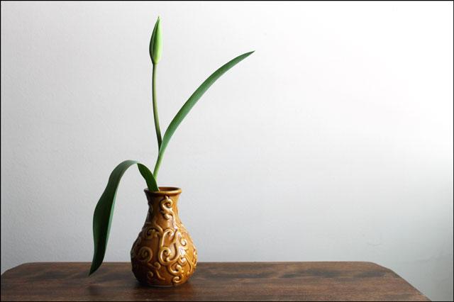 tulip-in-vase-02