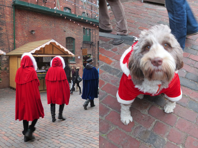 red-cloaks-at-christmas-market