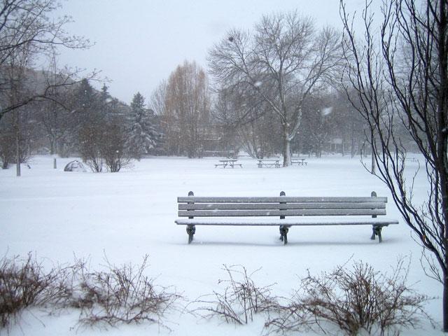 snowstorm-toronto-march-2014