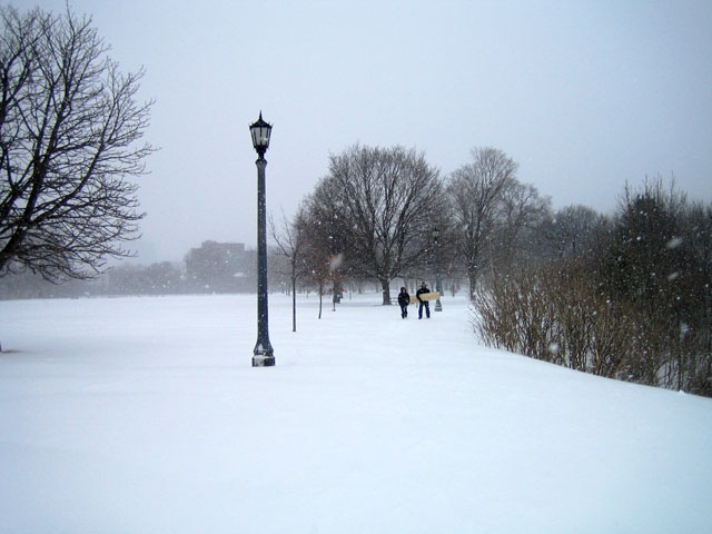 snowstorm-toronto-march-2014-08