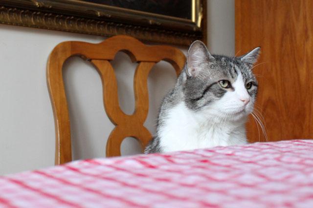 eddie-at-the-table-04