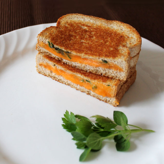 grilled-cheese-sandwich-with-fresh-herbs