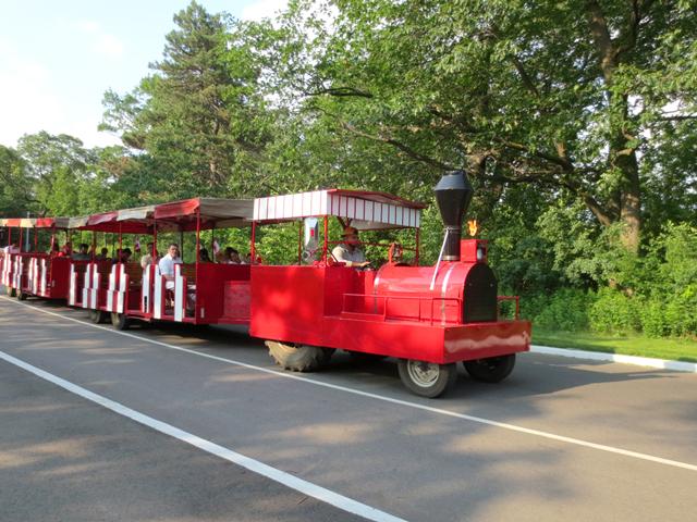 train-ride-in-high-park
