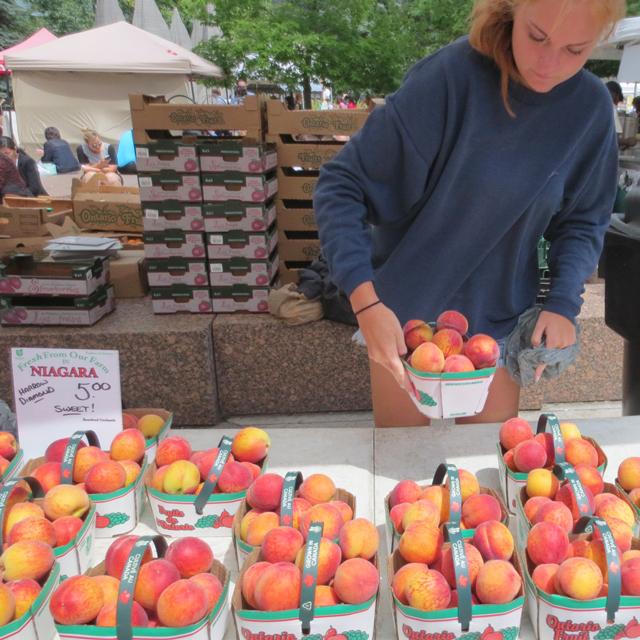 ontario-peaches-at-downtown-toronto-farmers-market