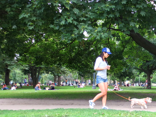 in-trinity-bellwoods-park-on-a-summer-sunday-afternoon-girl-walking-dog