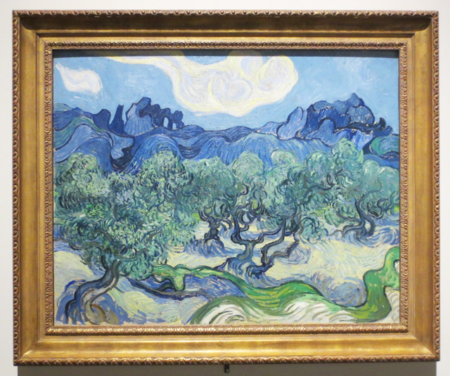 the-olive-trees-by-vincent-van-gogh-at-ago-toronto-mystical-landscapes-exhibition-on-loan-from-moma-ny