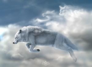 alexandre-vit-a-jamais-avec-loups