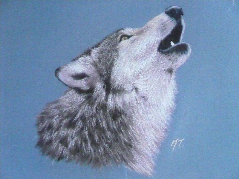 Oeuvre sous copyright © Merci à Monique Trolliet pour son autorisation de publication (http://www.animalcharacter.com)