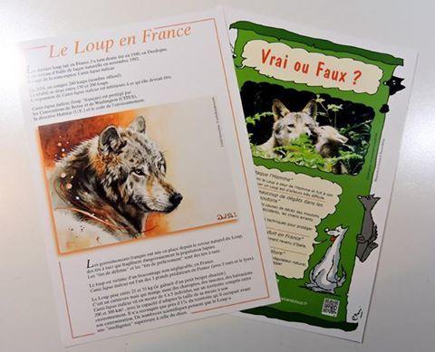 plaquette-informations-loup
