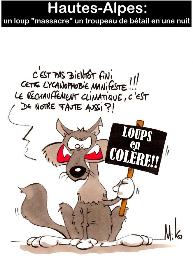 loups-colere-miko