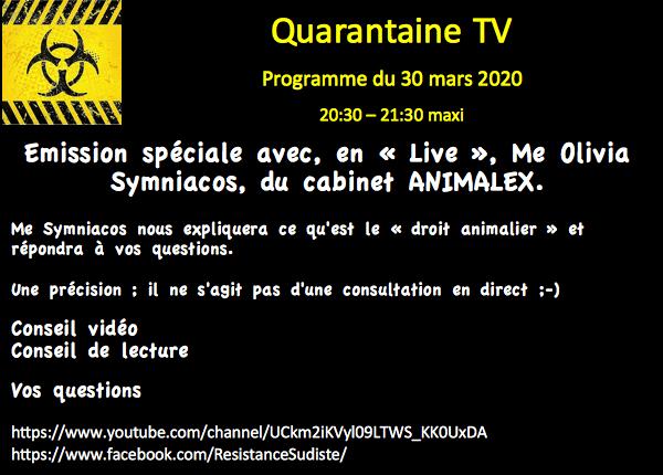quarantaine-tv-programme-3