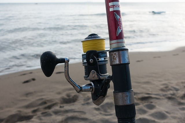 pêche en surfcasting - peche en mer