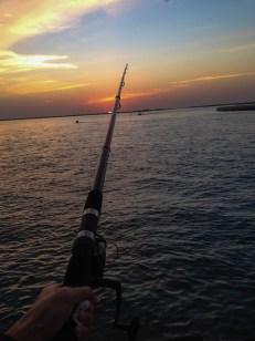 le shore jigging pour la peche en mer