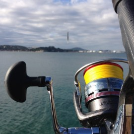 moulinet shore jigging