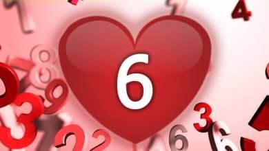 Photo of מספר 6 באהבה