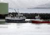 Torskemerdene Norway Seafods Melbu