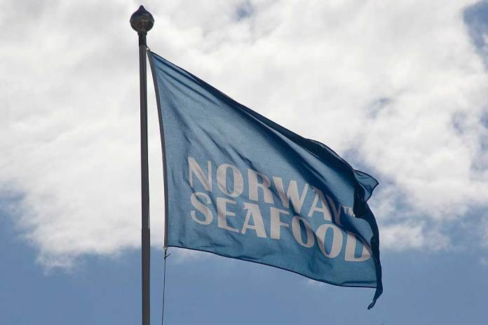 norway seafoods flagg vimpel