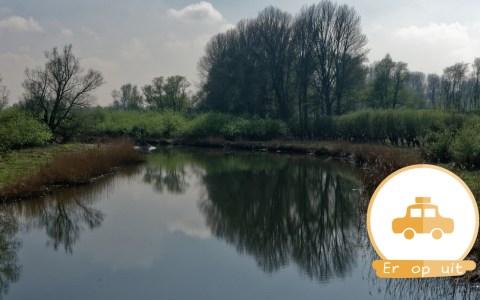 biesbosch dordrecht donderdagje uit donderdag dagje