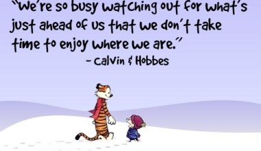 We're So Busy Watching Out............