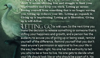 Difference between giving up and letting go