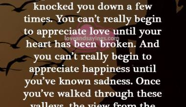 You Can't Really Begin To Appreciate Happiness