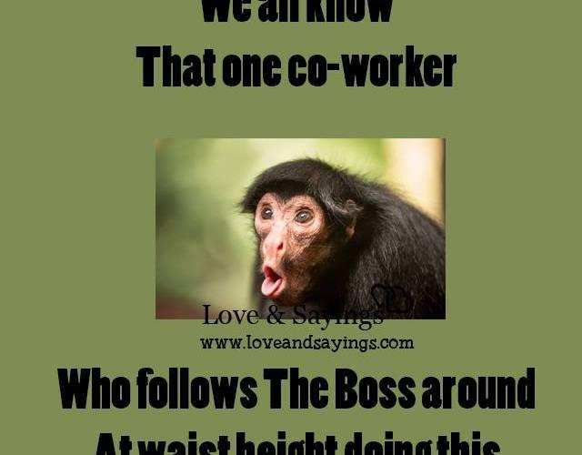 Who follows the boss