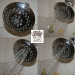 Review/Giveaway: Danze Showerhead (ends 6/27)