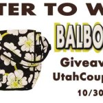 GIVEAWAY: Balboa Bags Messenger Bag
