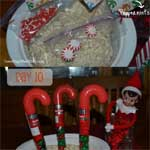 Elf on the Shelf Ideas – Candy Cane Garden