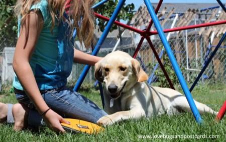 PetSmart Charities National Adoption Weekend Nov. 13-15, 2015 #AdoptLove