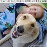 4 ways to help your kids through allergy season