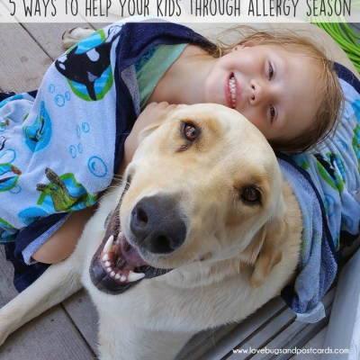 4 ways to help your kids through allergy season