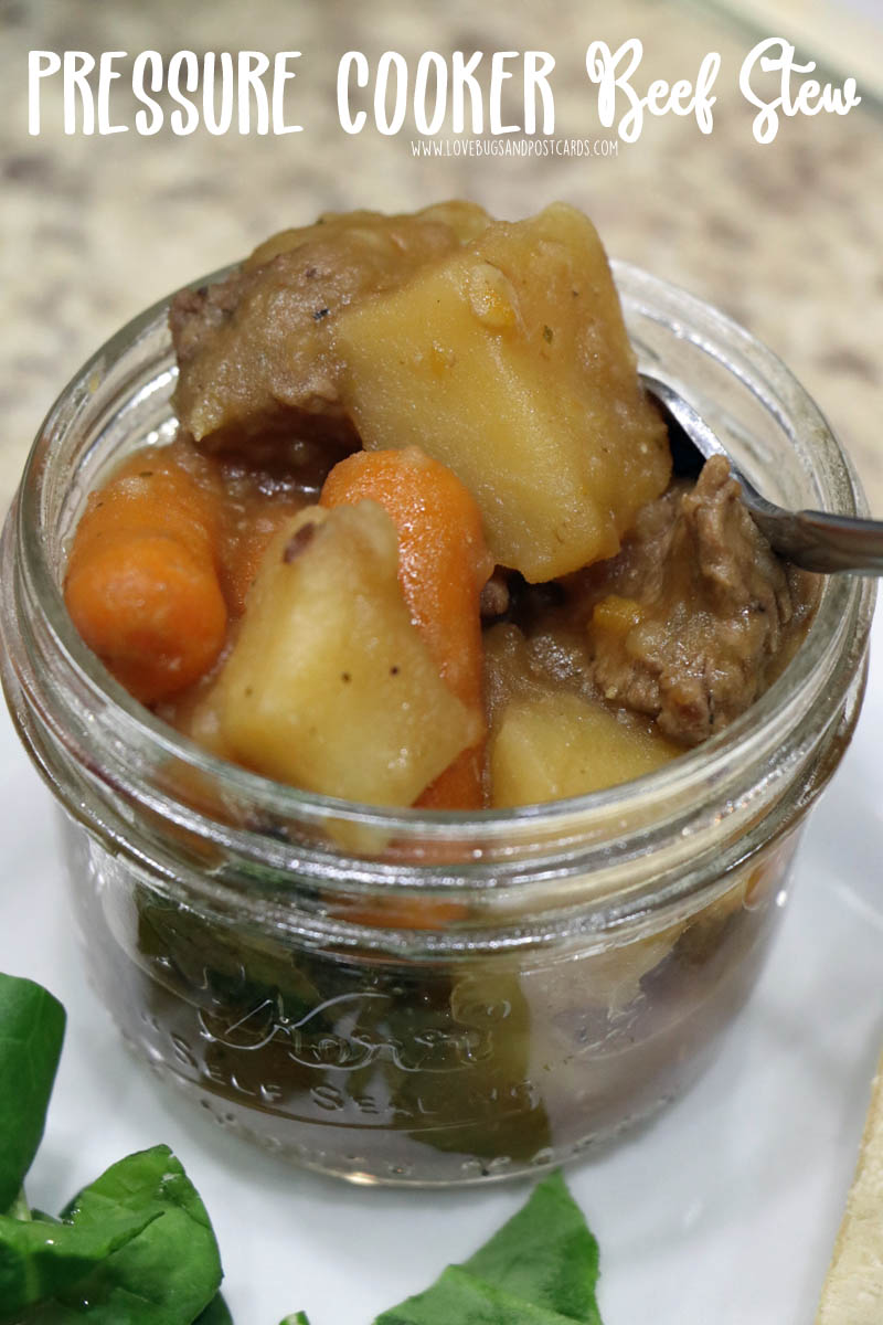 Pressure Cooker Beef Stew Recipe