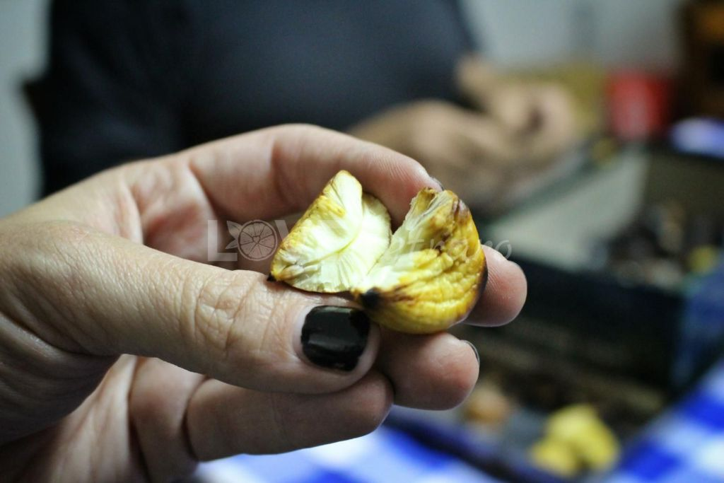 ruselli-castagne-caldarroste-calabria-love-cetraro-1