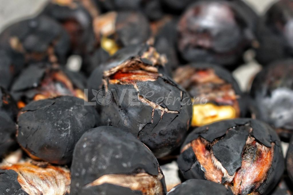 ruselli-castagne-caldarroste-calabria-love-cetraro-18