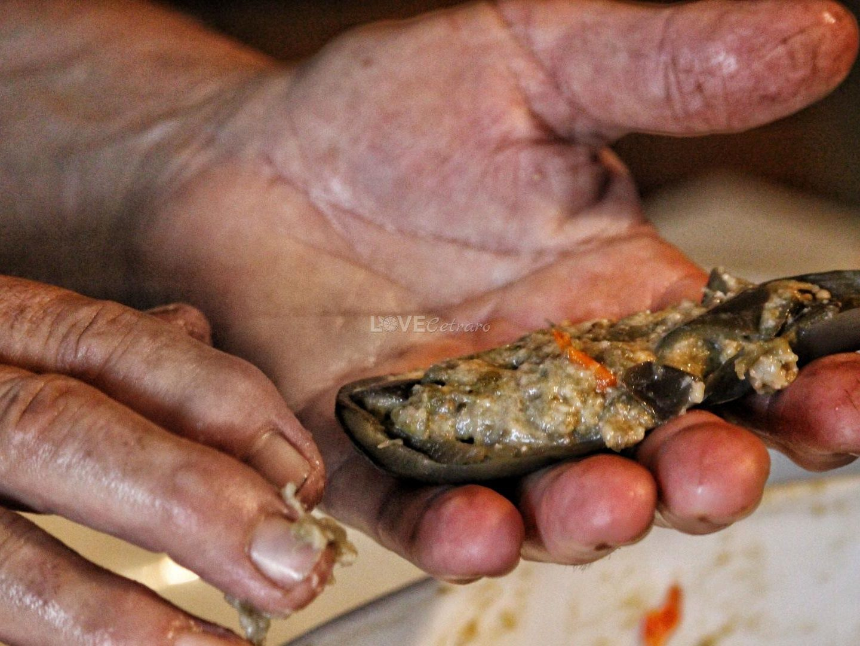 polpette-fritte-melanzane-calabrese-calabria-cetraro-pitticelli-milangiani (27)