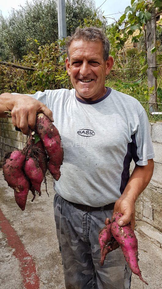papà-agricoltore-contadino-calabria (4)