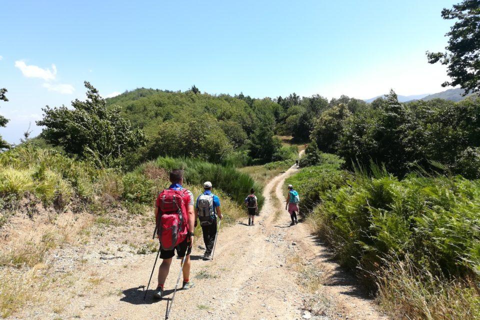 cammino-san-francesco-paola-trekking-calabria (14)