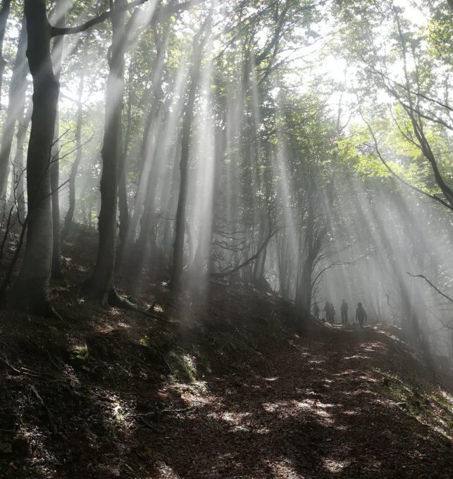 cammino-san-francesco-paola-trekking-calabria (4)