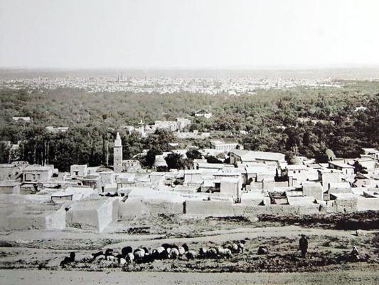 Salihiya Quarter and Damascus