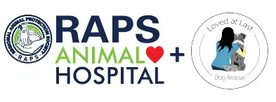 RAPS animal hospital