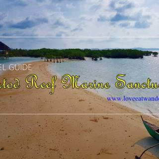 Buntod Sandbar and Reef Marine Sanctuary