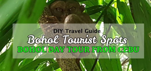 Bohol Tourist Spots Day Tour