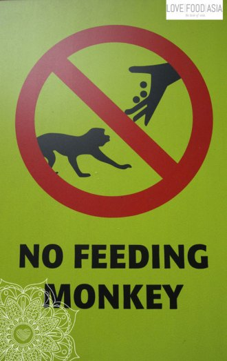 Keine Affen füttern