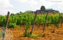 Winery next to Inle Lake