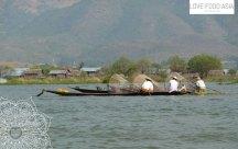Fishing man on Inle Lake