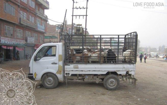 A small truck in Kathmandu