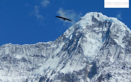 Unglaublicher Bergblick